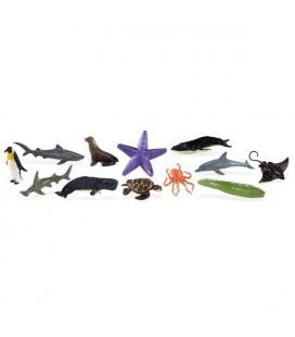 Morský život, vrecko Safari
