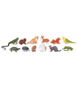 Domáce zvieratká, vrecko Safari