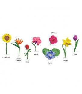 Kvety, tuba Safari