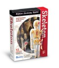 Model ľudského tela 4D - kostra