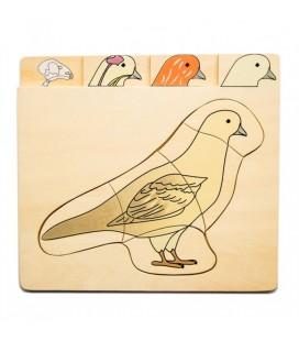 Viacvrstvové puzzle Vták