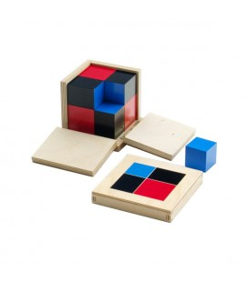 Binomická kocka