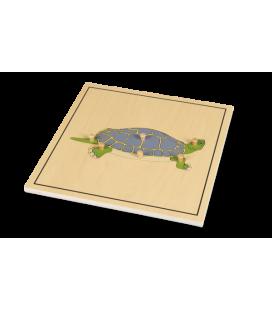 Montessori puzzle Korytnačka (s kostrou)
