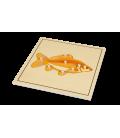 Montessori puzzle Ryba (s kostrou)