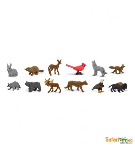 V prírode – tuba Safari