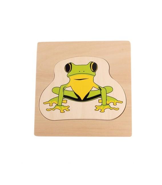 """Viacvrstvové puzzle """"Životný cyklus žaby"""""""