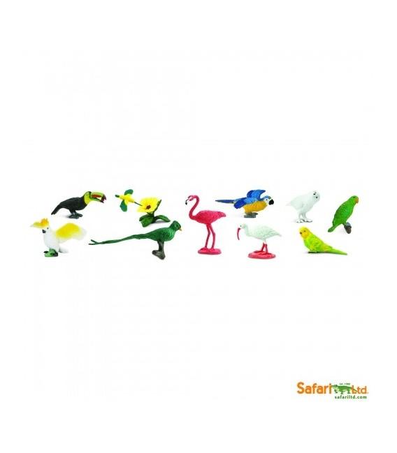 Exotické vtáky, vrecko Safari
