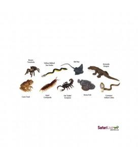 Jedovaté zvieratá, tuba Safari