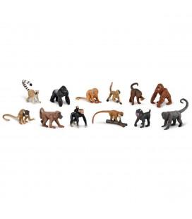 Opice a primáti, tuba Safari