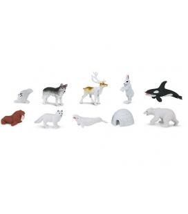 Arktída, vrecko Safari