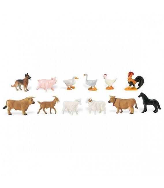 Zvierata na farme safari