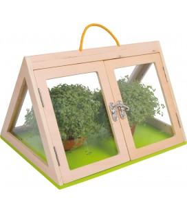 Domáci skleník