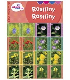 Pexeso RASTLINY