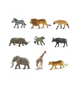 Zvieratá južnej Afriky, tuba Safari