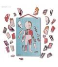 Magnetická skladačka ľudské telo Bodymagnet