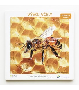 Viacvrstvové puzzle Vývoj včely